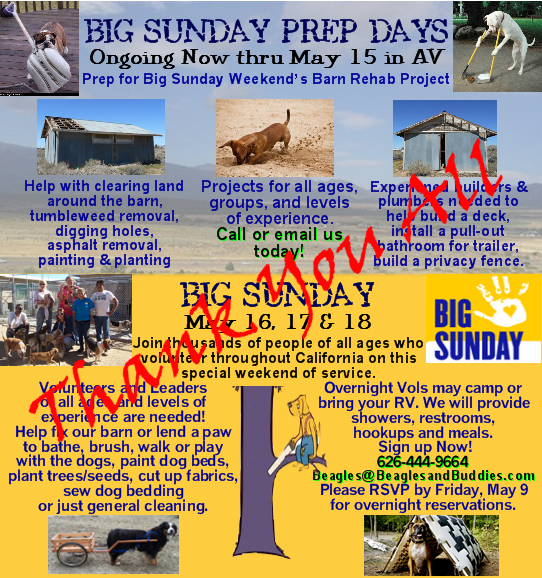 BIG-SUNDAY 2014