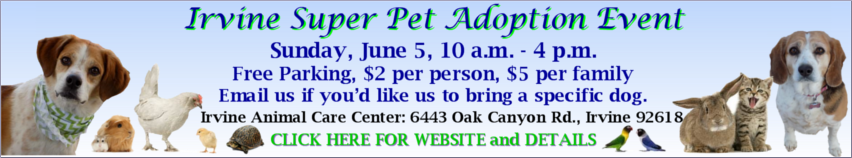 2016 Irvine super pet adoption