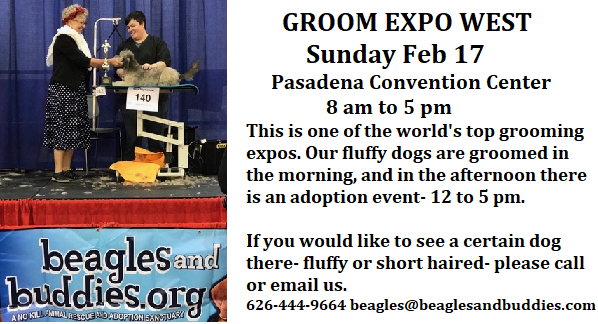 2019 Groom Expo West